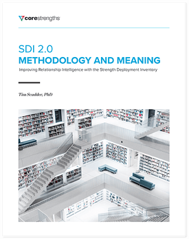 methodology_meaning_DS